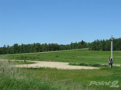 Land for Sale 1 Svenson Road, Minnedosa, MB