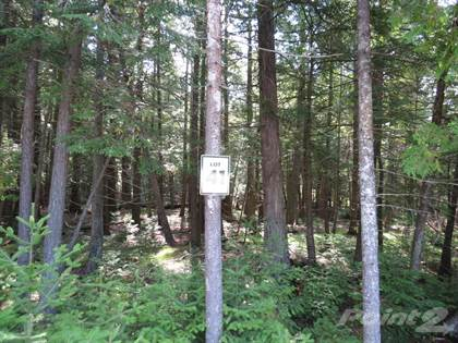 Land for Sale  in 41 Lakewood Country Lane, Northern Bruce Peninsula, Ontario, N0H1W0