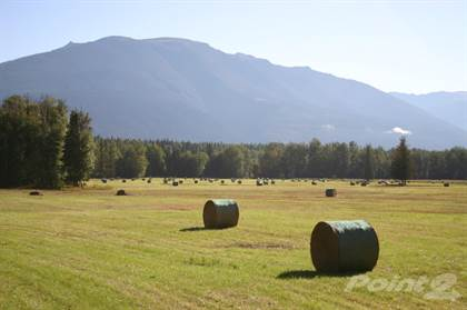 Farm for Sale 4900 Eddy Road, Mcbride, BC