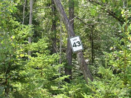 Land for Sale  in 43 Lakewood Country Lane, Northern Bruce Peninsula, Ontario, N0H1W0