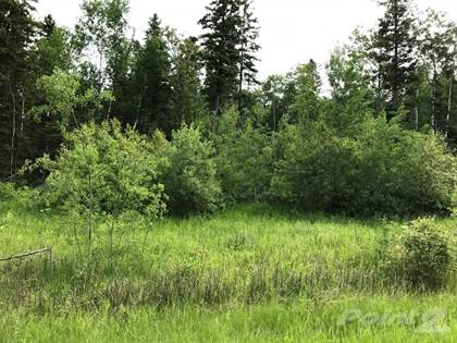 Land for Sale Pth 59 Highway, Traverse Bay, MB