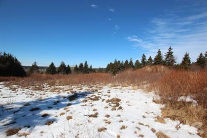 Land For Sale 12 Salmon Cove Road, South River, NL