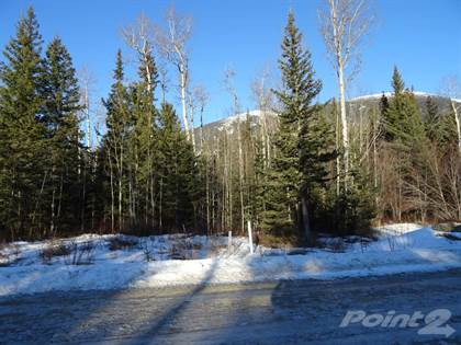 Land for Sale  in Lot 5 Airport Rd, Mcbride, British Columbia, V0J2E0