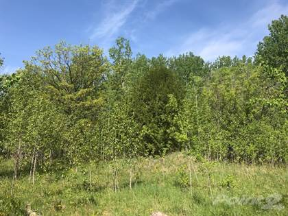Land for Sale 113068 Pitt Road, Traverse Bay, Traverse Bay, MB