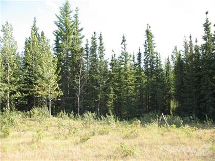 Land for Sale 5 64009 Twp Rd 704 ..., Grande Prairie, AB