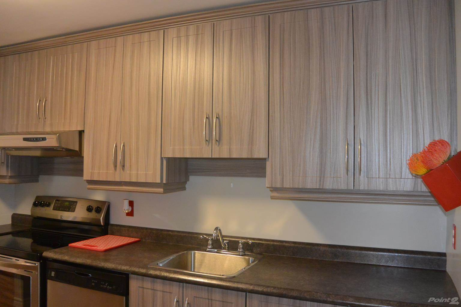 21 Lanse Aux Meadows Crescent in St John S - Condo For Sale : MLS# 1228444 Photo 7